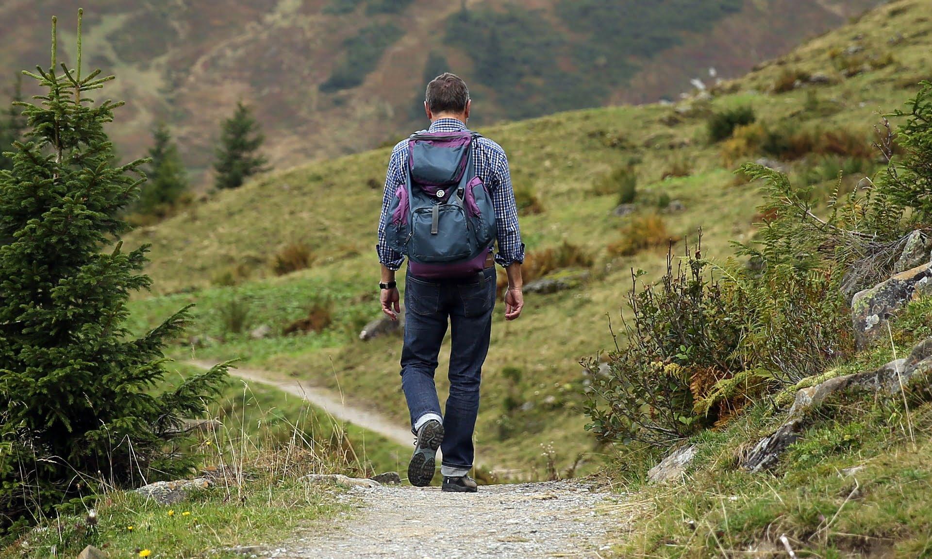 Amateur Traveler