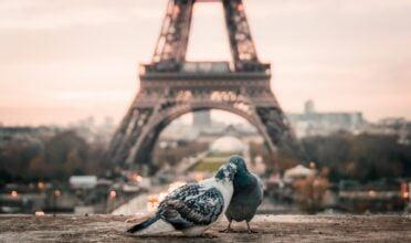 המלצות למקומות בפריז