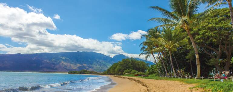 PCR tests in Maui